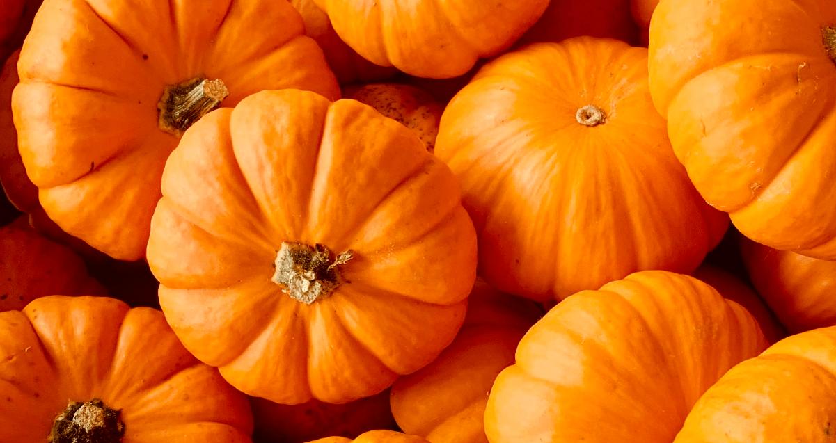 Recettes avec les fruits et légumes d'Octobre